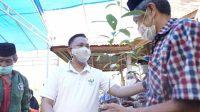 Bupati Bantaeng Apresiasi Program Padat Karya Budidaya Pala Bonto Tappalang